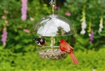 The Seed Saver Feeder