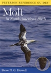 Peterson Reference Guides: Molt in North American Birds