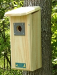 Downy Woodpecker House