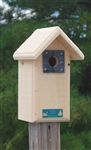 Backyard Birdhouse