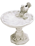 Shell Bird Bath