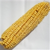 Whole Corn-on-Cob