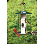 Heavy-Duty Mixed Seed Caged Feeder