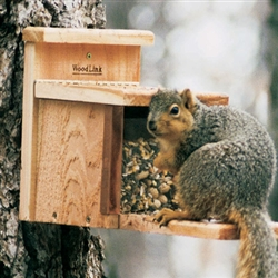 Squirrel Box Feeder
