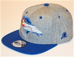 Colorado Denver Broncos Snap Back by Brawlin