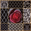1086 Deep Red Rose Collage