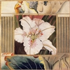 1106 White Lily Collage