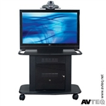 Cart (32 Inch Metal, Holds Up To One 42 Inch Plasma With Mntg Sys)