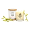 Green Bamboo Scented Candle