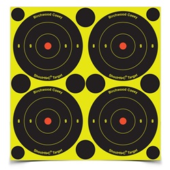 "Birchwood Casey Shoot-N-C 3""  Bull's-eye Target - 240 Targets"