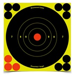 "Birchwood Casey Shoot-N-C 6"" Round Target 12Pack"