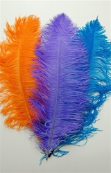 Ostrich Plumes Feathers