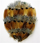 Combination Pheasant Feather Pad