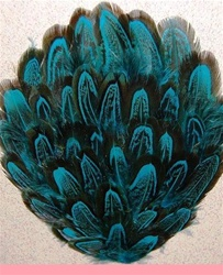 Pheasant Feather Pad