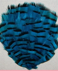 Pheasant Grouse (Chukar) Dyed Feather Pad