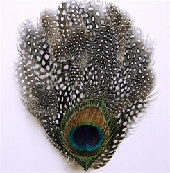 Large Guinea Pad with Peacock Eye Trim