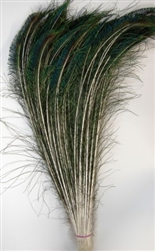 Peacock Feather Swords 30-35""