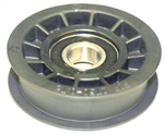 R10143 - Composite Flat Idler Pulley FIP2500-1.00