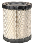 R14289 Air Filter Replaces Briggs & Stratton 798897