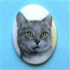 cat cameo, 40x30mm, 03204, cameos, portrait cameo, cats, kitty, kitties, porcelain cameo, decal cameo, B'sue Boutiques, jewelry supplies