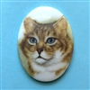 cat cameo, 40x30mm, 03207, cameos, portrait cameo, cats, kitty, kitties, porcelain cameo, decal cameo, B'sue Boutiques, jewelry supplies
