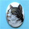 cat cameo, 40x30mm, 03209, cameos, portrait cameo, cats, kitty, kitties, porcelain cameo, decal cameo, B'sue Boutiques, jewelry supplies