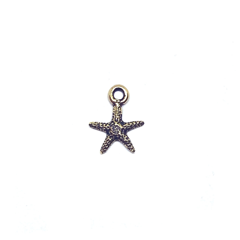 starfish charm, look of antique brass, 13x10mm, 03346, star fish, beach theme, nautical, ocean, sea life, jewelry making, jewelry supplies, B'sue Boutiques, fish, charms, charm accents, embellishment, double sided