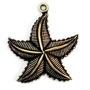 brass starfish, beach jewelry, brass ox, 22mm, 04474, B'sue Boutiques, starfish charms, starfish pendants, vintage jewellery supplies, jewelry making supplies, antique brass seahorses, brass ocean stampings,