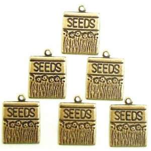 Brass Seed Packet Charms, Brass Charms, Brass Ox, 15 x 13mm