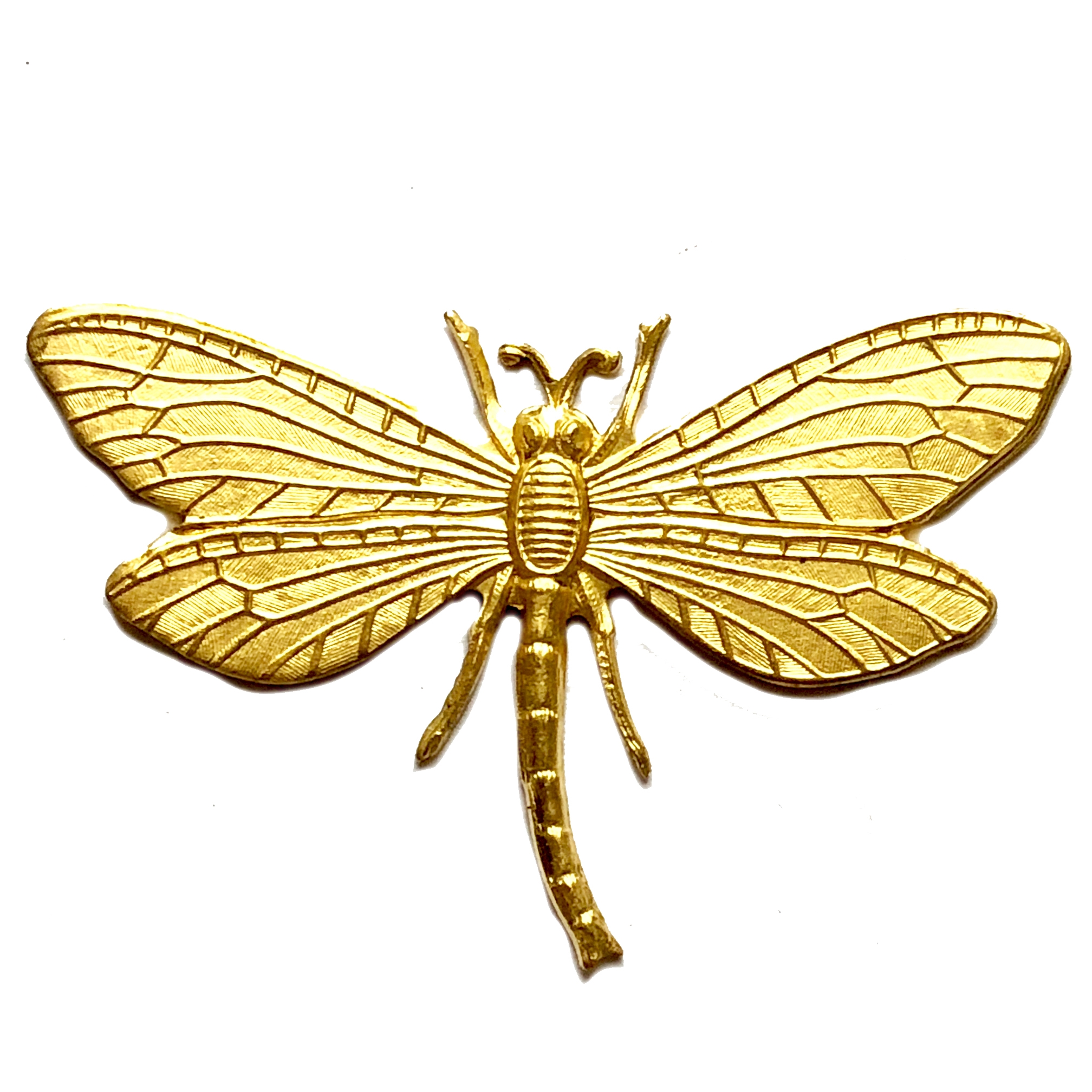 brass dragonflies, brass insects, raw brass, 06168, B'sue Boutiques, nickel free jewelry supplies, vintage jewelry supplies, US made jewelry supplies, dragonfly jewelry