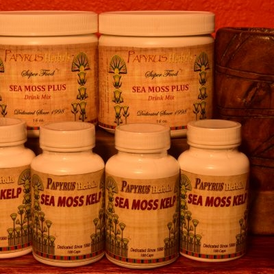 SEA MOSS/IRISH MOSS