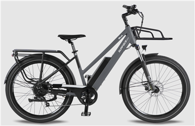 Werk-Surface604 Electric Bike