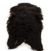 Sheepskin Rug Blackish Brown w White Accent