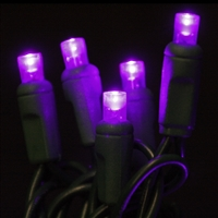 LED 70 Light 5MM – Purple (QTY 12) **PREORDER ONLY**