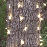 LED Clark Griswold 100L M8 Tree Trunk Net - Warm White (Qty 12)