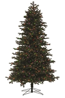 Noble Fir Tree 7.5' - Multi