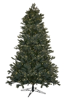 Noble Fir Tree 9.0' - Clear