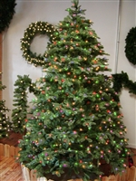 Noble Fir Tree 9.0' - Multi