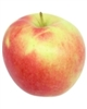 "The Ambrosia apple is not an ordinary apple. Named after the mythical ""food of the gods"", this stunning apple, born from a chance seedling, is a delight for all the senses."