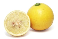 Exotic Fruit Market grows Bergamot Sour Orange in California, USA since 2003. The Bergamot Orange is a surprisingly nutritious citrus fruit that has a fresh scent and a very useful essential oil which is taken from the peel.