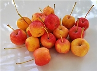 Crabapples have a very astringent, tart taste, and are usually unpleasant to eat fresh. However, they make excellent jelly, jam, and sauce, and have traditionally been used in cider. They pair well with strong blue cheeses, such as English Stilton.