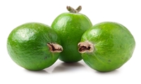 Feijoa is a very rich source of soluble dietary fiber which makes it a good bulk laxative. The fiber content helps protect the colon mucous membrane by decreasing exposure time to toxins as well as binding to cancer-causing chemicals in the colon.