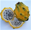 Yellow Dragon Fruit may appear to be a mix between a kiwi and a pear. It's like a kiwi because the seeds also contain a ton of nutrients like omega 3s and omegas 6s—the good fats.