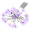 ALEKO Battery Operated String Lights - 50 LED -  19.5 Feet - Set of 5 - Purple