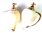 1pc shell twist charms white gold plated