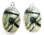 2pc 30mm Oval Vintage Charm Set Multiple Dragonflies