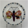 Antique Baccarat Butterfly