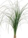 Wholesale Bulk Discount Wholesale Bear Grass Greenery