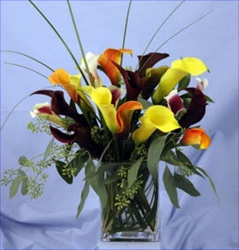 Wholesale Bulk Discount Mini Calla Lily Assorted