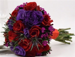 Red-Purple 10-Piece